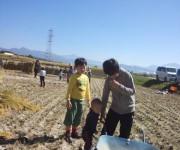 2014.09.29 稲刈り